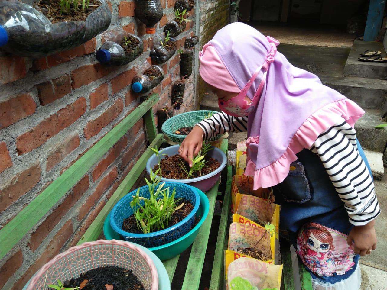 """Program kelentingan keluarga, menjadi sarana guru dalam menstimulasi 6 aspek perkembangan anak. Salah satunya dengan kegiatan berjudul """"Bagaimana Kamu Menanam Kangkung?"""" di TK ABA Wonokromo, Tulungagung"""