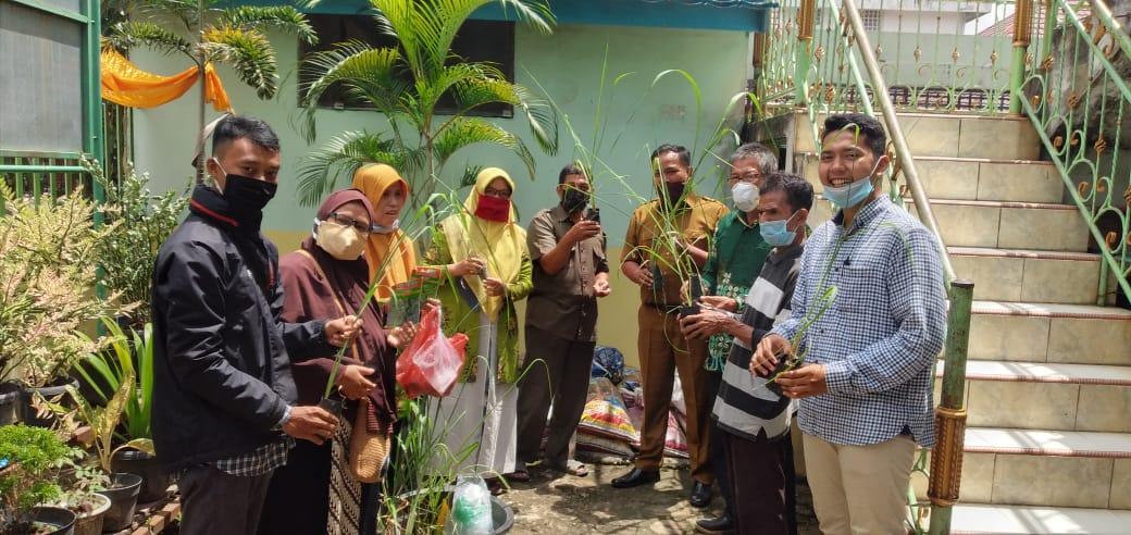 Lembaga Lingkungan Hidup dan Penanggulangan Bencana (LLHPB) Riau membagikan bibit sayur ke TK Aisyiyah Bustanul Athfal 2 (ABA 2) dan SD Muhammadiyah 2 di Kecamatan Sukajadi, Pekanbaru, pada Senin (24/8/2020) siang.